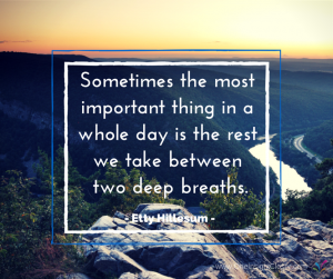 Sometimes the most important thing in a whole day is the rest we take between two deep breaths. - Etty Hillesum